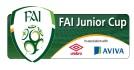FAI-Junior-Cup